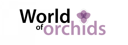 INTERNATIONAL ORCHID SHOW<br>since 2008